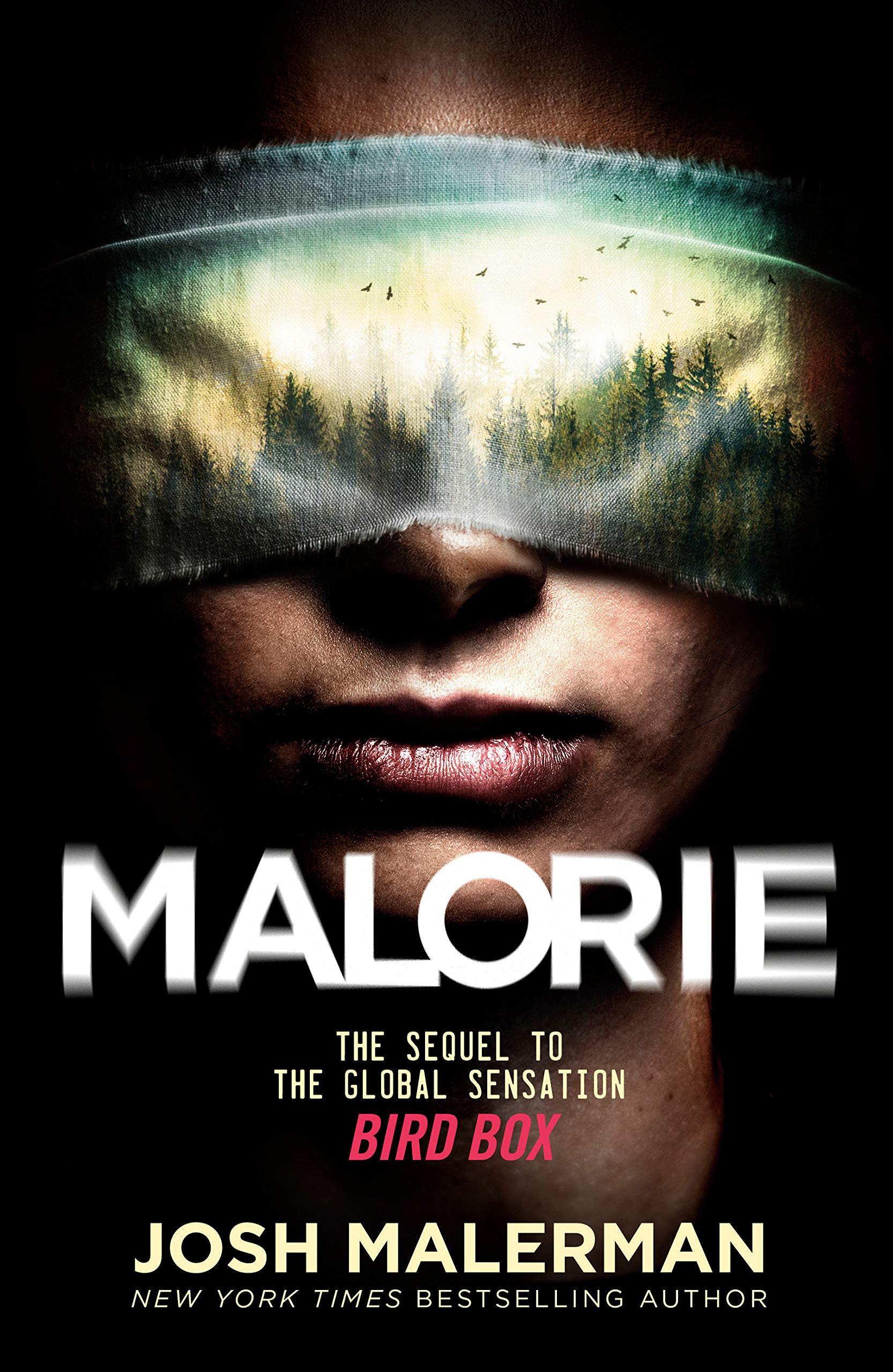 Malorie A Bird Box Novel Malerman Josh 9780593156858 Amazon Com Books Released in feb 2011, born this way went to #1 and garnered comparisons to express yourself by madonna and waterfalls by tlc. malorie a bird box novel malerman