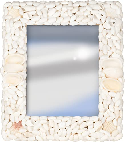 Terragrafics Palm Springs Wall Mounted Shell Mirror, 18 by 24-Inch, White