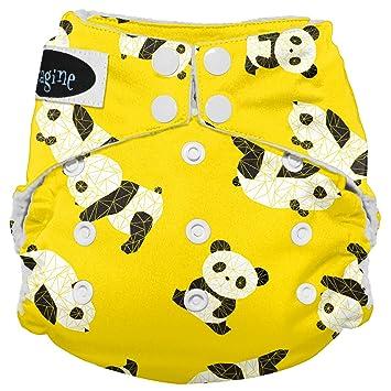Amazon.com: Imagine Baby Products Stay Dry - Pañal para bebé ...