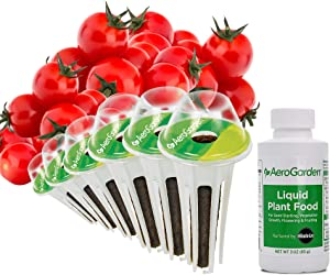 AeroGarden Red Heirloom Cherry Tomato Seed Kit (6-pod)