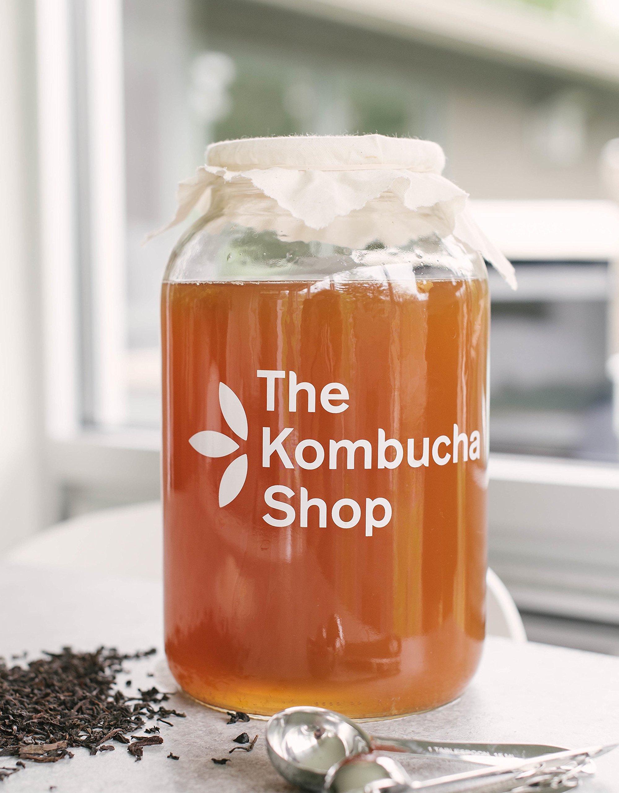 Kombucha Brewing Kit with Organic Kombucha Scoby. Includes Glass Brew Jar, Organic Kombucha Loose Leaf Tea, Temperature Gauge, Organic Sugar and More! by The Kombucha Shop (Image #3)