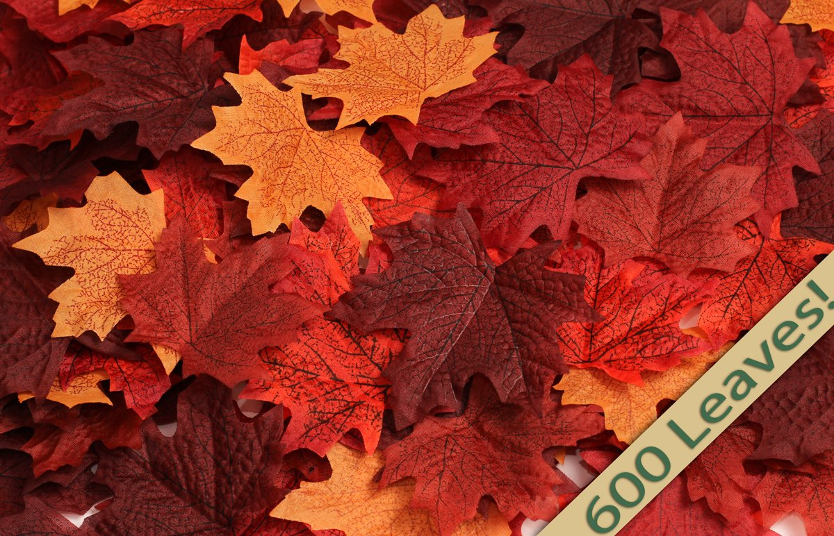 Factory Direct Craft Super Bulk Pack of 600 Silk Fall Maple Leaves in a Mixture of Autumn Colors - Great Autumn Table Scatters for Fall Weddings & Autumn Parties