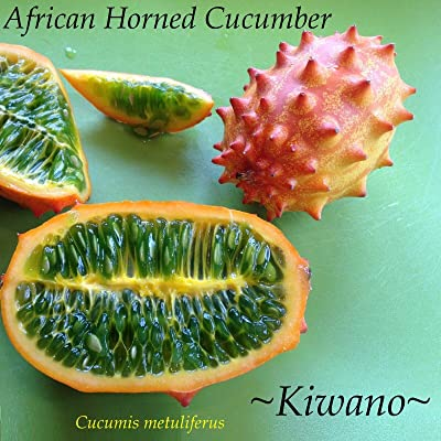 AchmadAnam - 10+ Seeds ~KIWANO~ Cucumis metuliferus African Horned Melon Cucumber Non GMO : Garden & Outdoor
