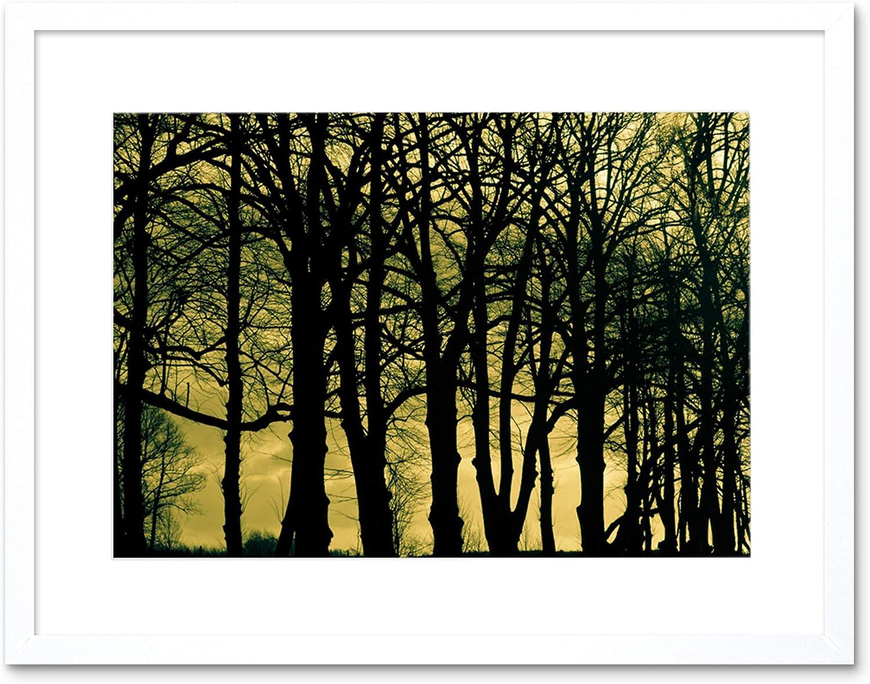 FOREST MONOCHROME NIGHT WINTER BLACK FRAME FRAMED ART PRINT PICTURE B12X9562