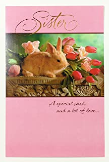 Amazon greeting cards birthday spanish winnie the pooh its easter card sister sister a special wish and a lot of love m4hsunfo