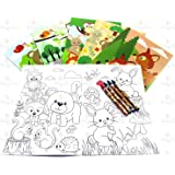 Woodland Animals Coloring Book Set With Crayons Party Favor 12 Pack