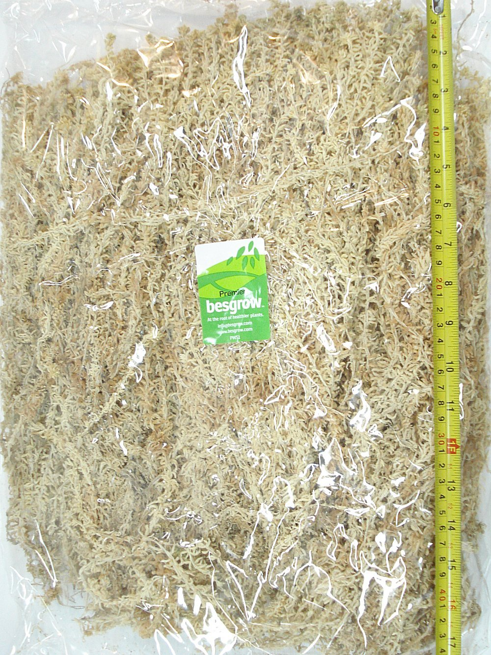 Premium Long Strand AAAA New Zealand Moss for Neofinetia Falcata Orchids