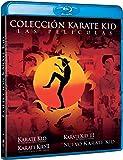 Karate Kid 1-4 (Edición 2017) [Blu-ray]