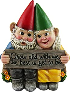 DWK - Growing Old Together - Garden Gnome Couple in Love Collectible Figurine Best Friends Lovers Romantic Statue Indoor Outdoor Garden Patio Home Décor, 5.75-inch