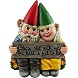 DWK - Growing Old Together - Garden Gnome Couple in Love Collectible Figurine Best Friends Lovers Romantic Statue Indoor Outd