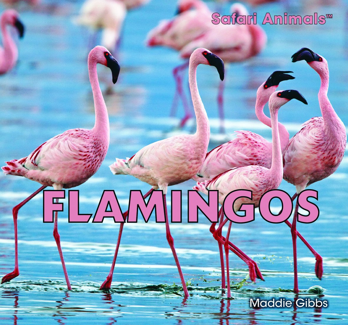 Download Flamingos (Safari Animals) pdf epub