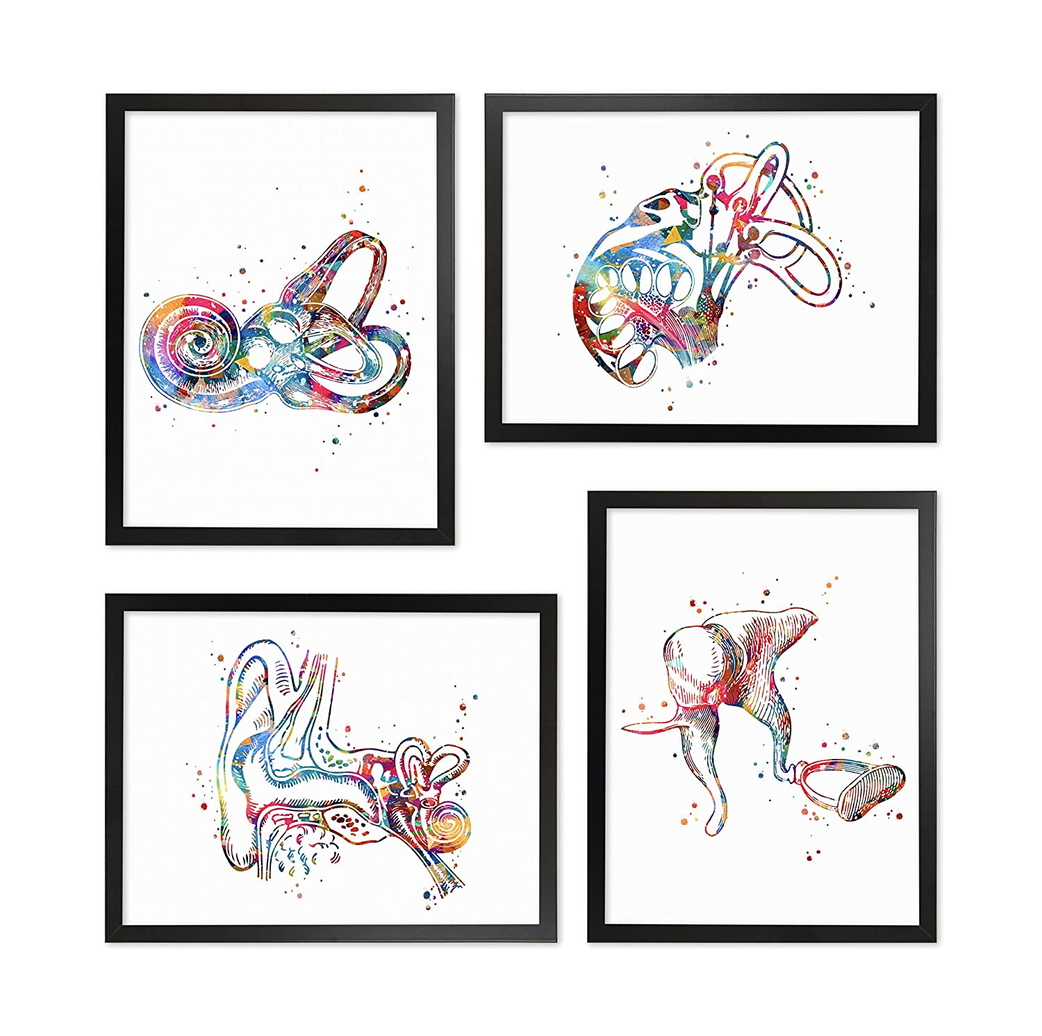 Audiology Watercolor Poster Set Ear Diagram Art Anatomical Office Decor Ear Anatomy Print Audiology Specialist Cross Section Clinic Hearing Office Decor Great Gift for Audiologist