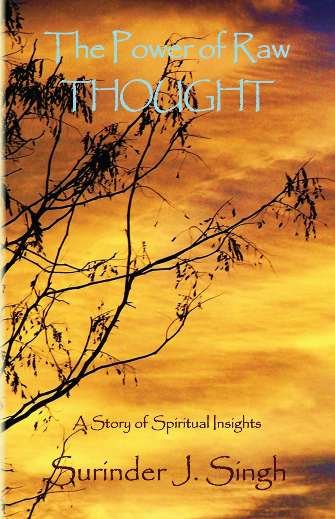 The Power of Raw Thought: A Story of Spiritual Insights pdf