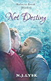 Not Destiny (Rules to Break Book 1)