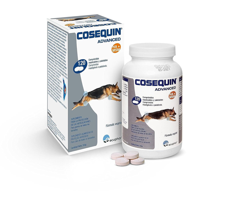COSEQUIN SE506112 Cuidado Cadera y Articulaciones Canino DS Msm Ha 120CPD: Amazon.es: Productos para mascotas