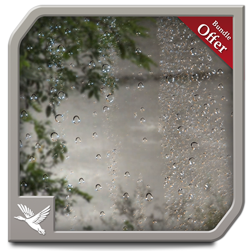 Wet Rainy Jungle HD - Free Romantic Theme for TV & Fire Devices