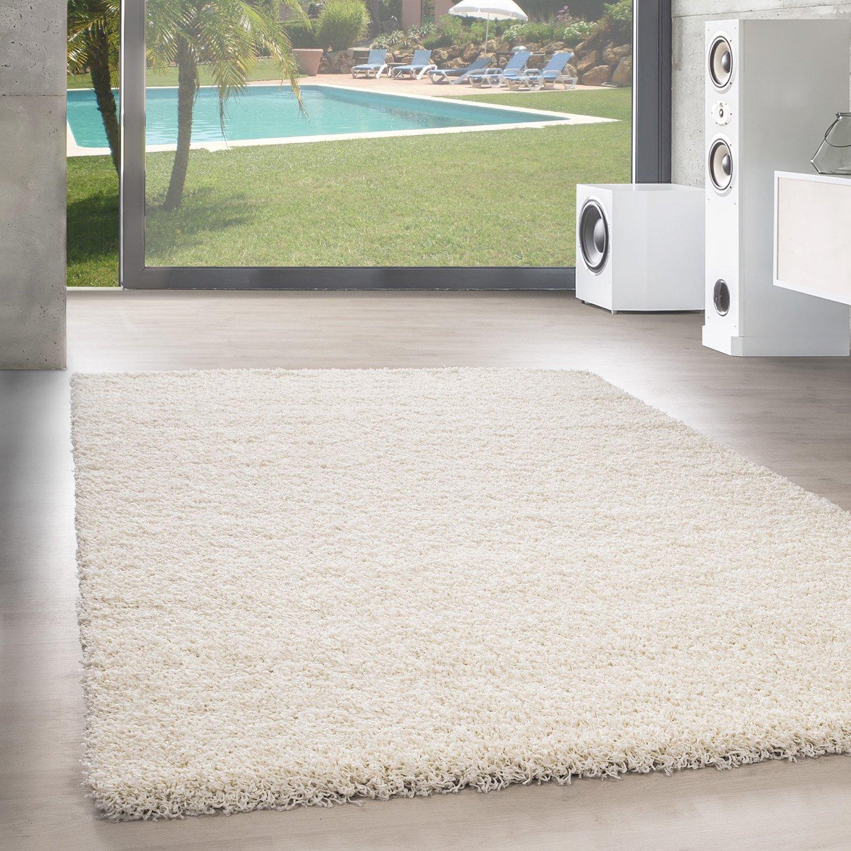 Unbekannt Shaggy Hochflor Langflor Teppich Wohnzimmer Carpet Uni Farben, Rechteck, Rund, Farbe Anthrazit, Größe 200x200 cm Quadrat B06XTHGMZT Teppiche