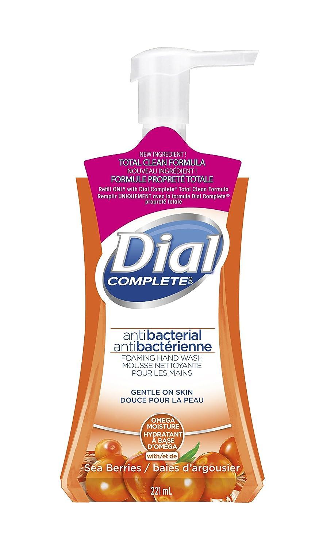 Dial Foaming Antibacterial Hand Wash, Antioxidant Power Berries, 221 Milliliter (1936815)