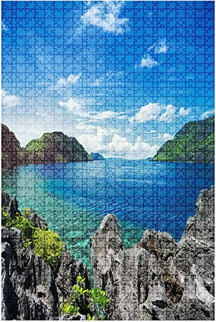 Large Jigsaw Puzzles 1000 Piece Adult Kids Assembling Toy Family Game Home Decor