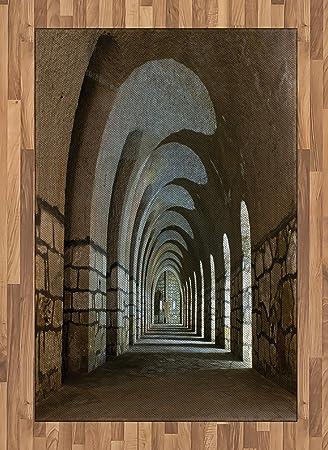 Amazon.com: Antiguo área alfombra por Ambesonne, pasillo en ...