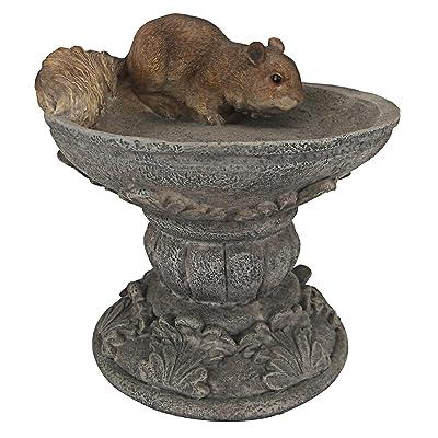 Design Toscano Hunter the Woodland Squirrel Statue, Multicolored : Outdoor Statues : Garden & Outdoor