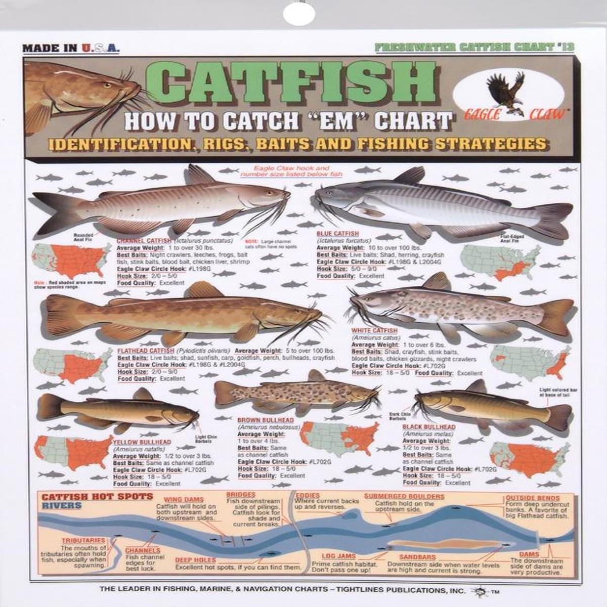 Amazon.com : Tightline Publications Catfish How To Catch # 13 ...