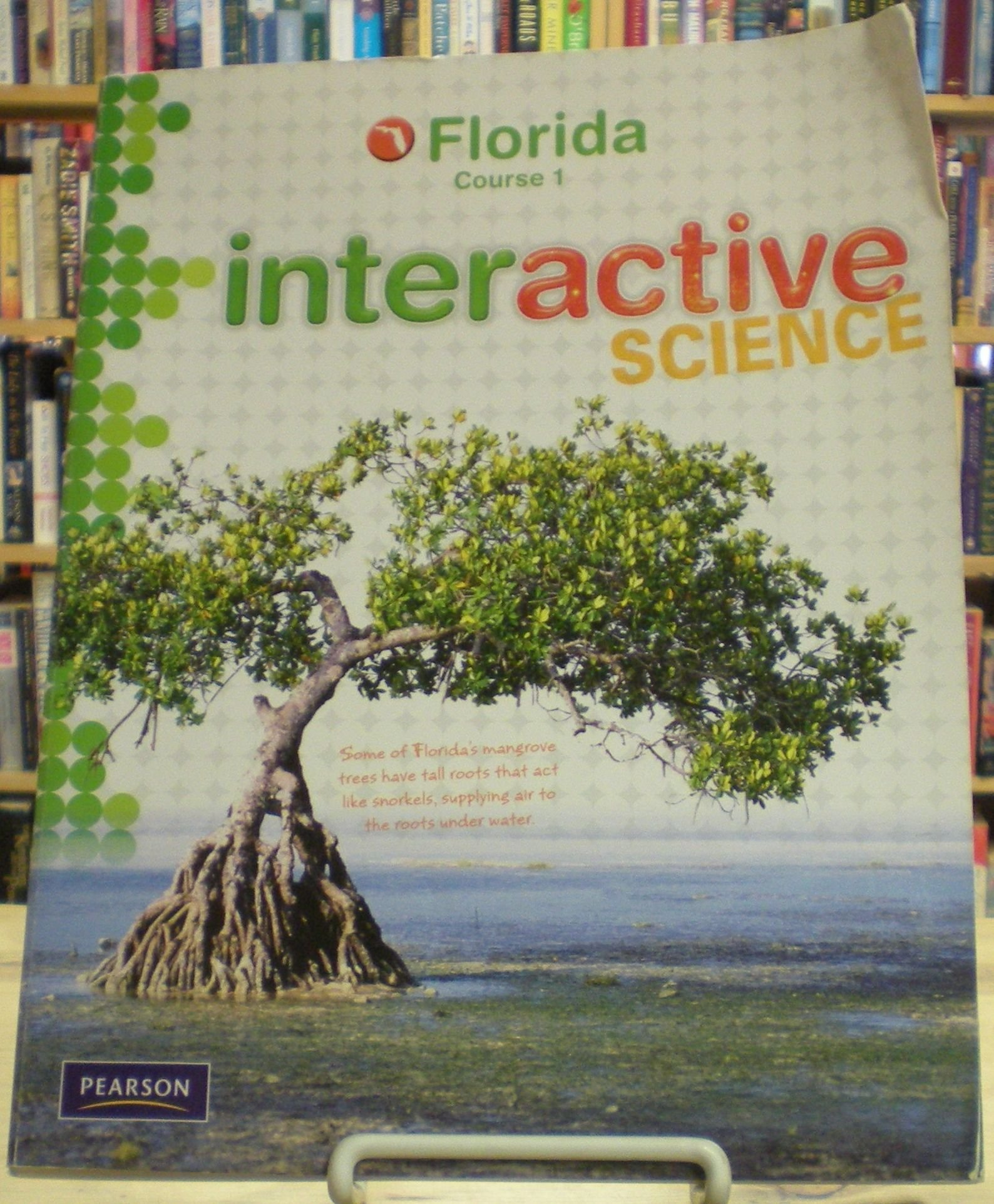 Download Interactive Science Course 1 Florida pdf