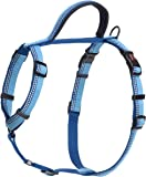 HALTI Premium Dog Walking Harness, Large, Blue