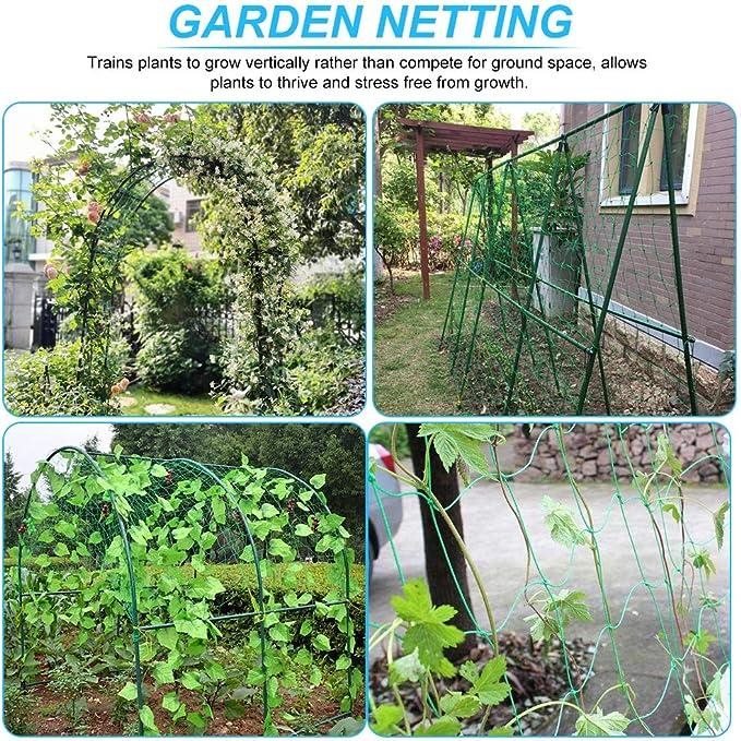 Red para plantas doradas, 1, 8 x 3, 6 m, con gran ancho de malla verde, red de apoyo para plantas trepadoras, plantas vegetales, red para pepinos, jardín, invernadero, pepinos, tomates: Amazon.es: Jardín