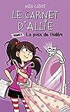 Le carnet d'Allie - La pièce de théâtre