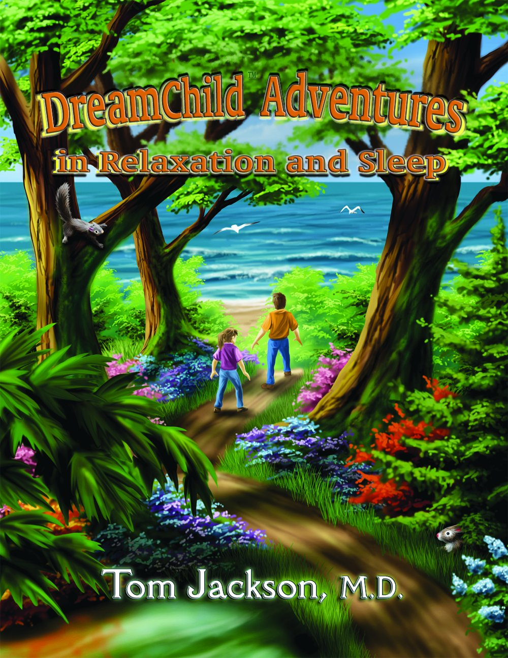 DreamChild Adventures In Relaxation and Sleep Perfect Paperback – July 1,  2012