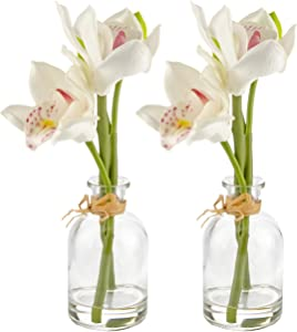 Artificial Flowers – Set of 4 Real Touch White Orchids in 2 Decorative Glass Bud Vases - Home Decor - 9 in/23cm Tall - Living Room, Dining, Dressing or Coffee Table, Desk, Bedroom – Gift for Her