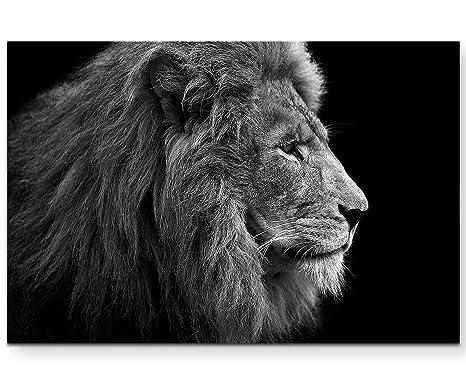 Top 12 Löwe Zeichnung Schwarz Weiß Gorgeous Tiny