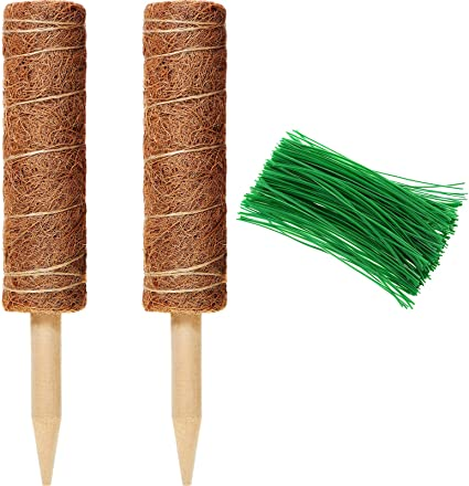 Coir Moss Totem Pole for Plant Support Extension Climbing Indoor Plants Creeper 2 Pack 12 Inch Coir Totem Pole