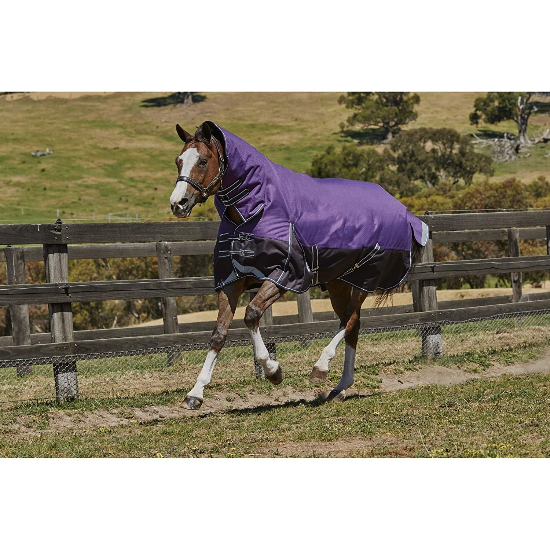 Weatherbeeta Comfitec Heavy Plus Dynamic Combo Neck Turnout Blanket