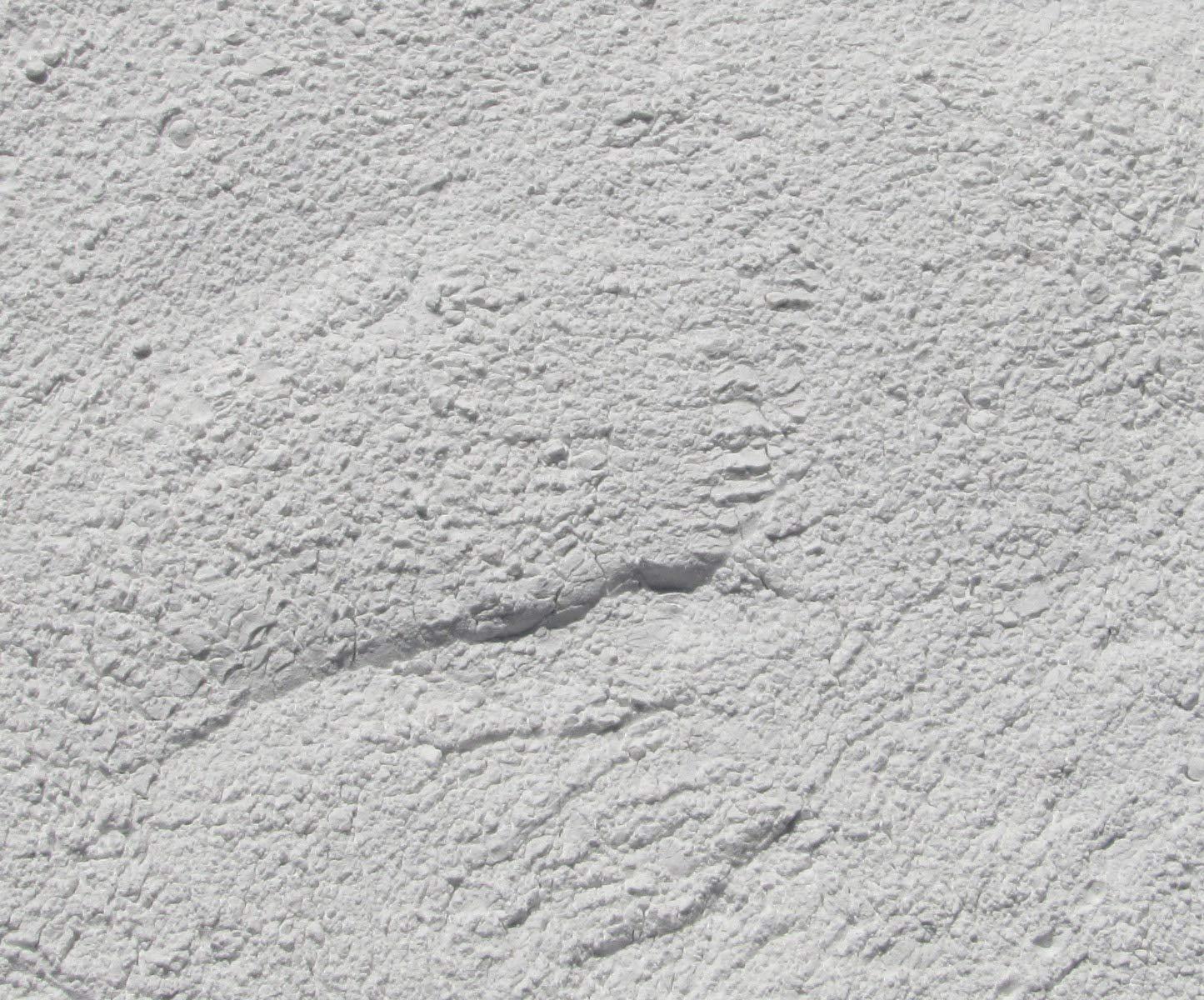 4 Lb. 1200 Grit - Final Polish Aluminium Oxide Rotary Vibratory Rock Tumbler Tumbling Polishing Powder Abrasive Grit by Algrium (Image #1)
