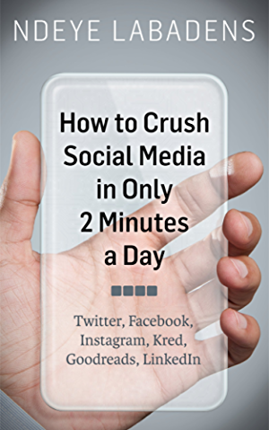How to Crush Social Media in Only 2 Minutes a Day: Twitter; Facebook; Instagram; Kred; Goodreads; LinkedIn
