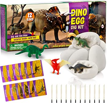 LifeJoy 12 Different Dinos Educational Toys Gift Baskets