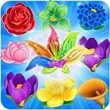 Blossom Story offers
