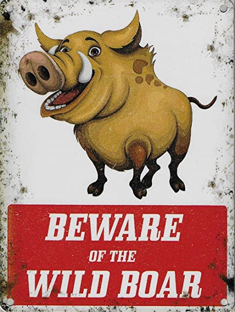 HiSign Beware of The Wild Boar Retro Cartel de Chapa Coffee ...