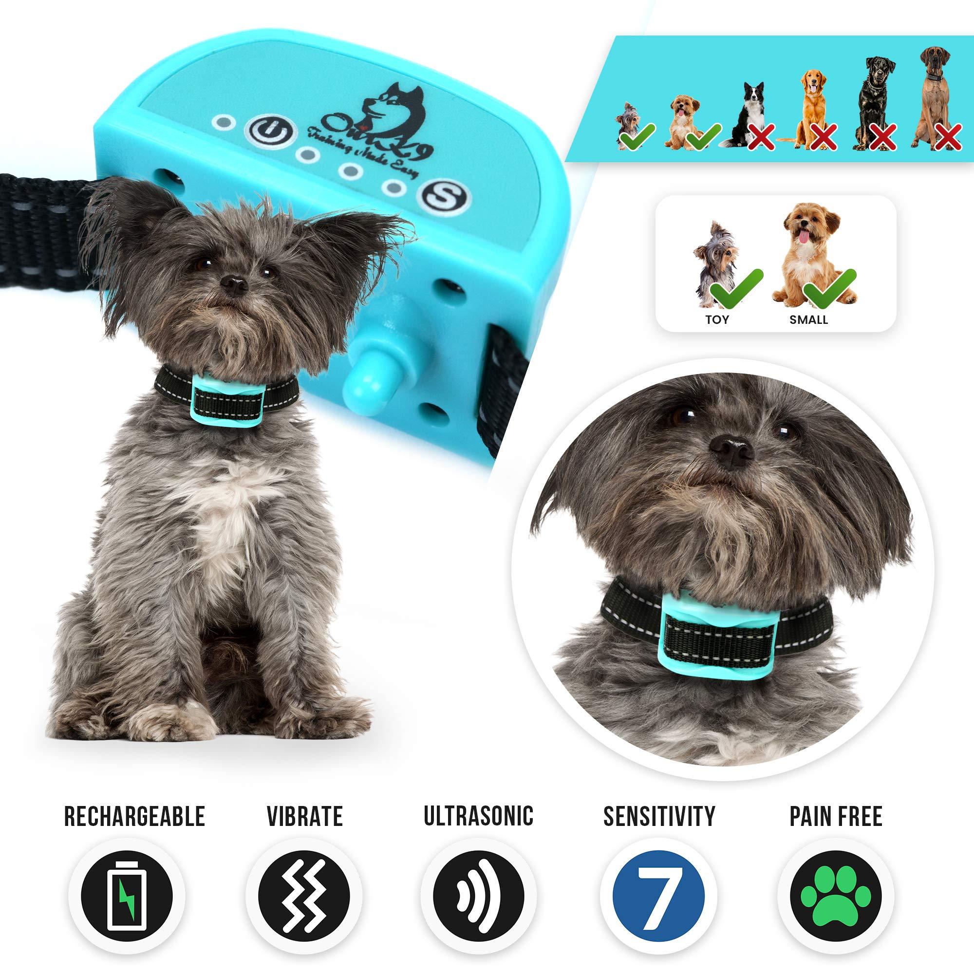 Small Dog Bark Collar | Barking Collars for Small Dogs | Bark Collar Small Dog | Citronella bark collar | Bark Collar | Anti Bark Collar | Anti Bark | Dog Bark Collar | No Bark | Pain Free | 3lb Plus