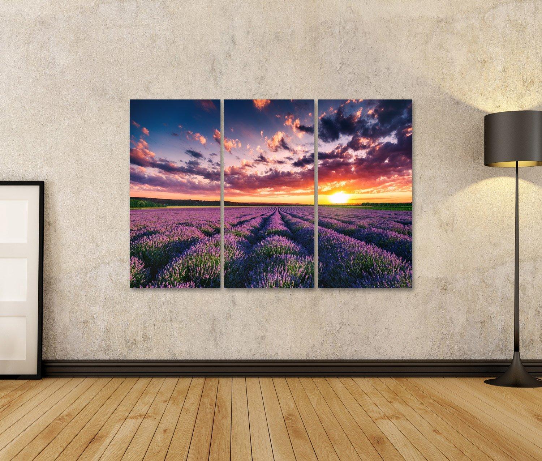 Islandburner Bild Bilder auf Leinwand Lavendelfeld Provence Lavendel Poster, Poster, Poster, Leinwandbild, Wandbilder abd0db