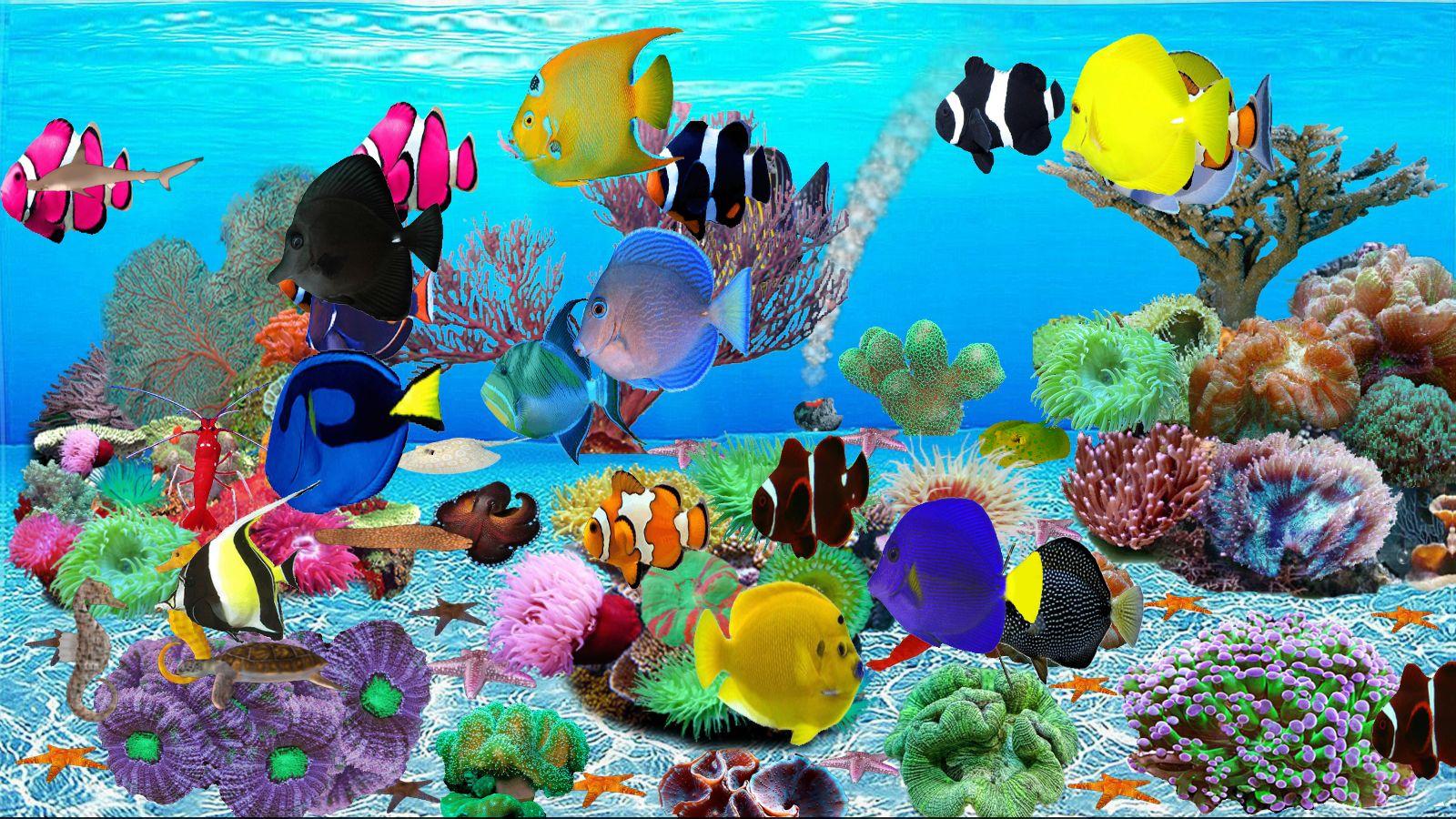 Undersea World Aquarium [Download] by MAC N PC Software