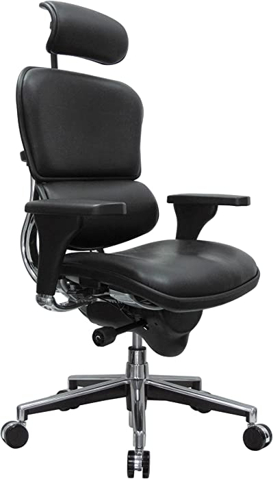 Eurotech Seating Ergohuman High Back Leather Swivel Chair, Black