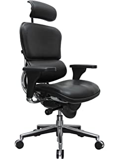 0b491ca03a41 Eurotech Seating Ergohuman LE9ERG(N) High Back Leather Swivel Chair, Black