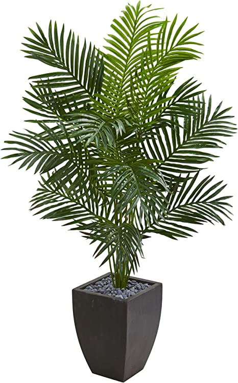 Amazon Com Nearly Natural 5 5 Paradise Palm Tree In Black Planter Artificial Plant Green Home Kitchen