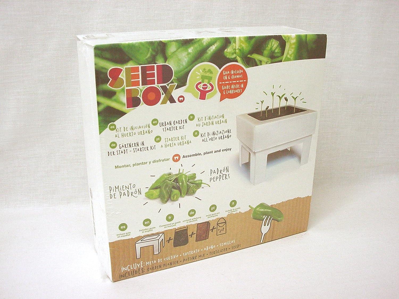 SeedBox SBCUTC - Huerto Urbano de Tomates Cherry: Amazon.es: Jardín