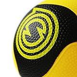 Spikeball Pro Balls