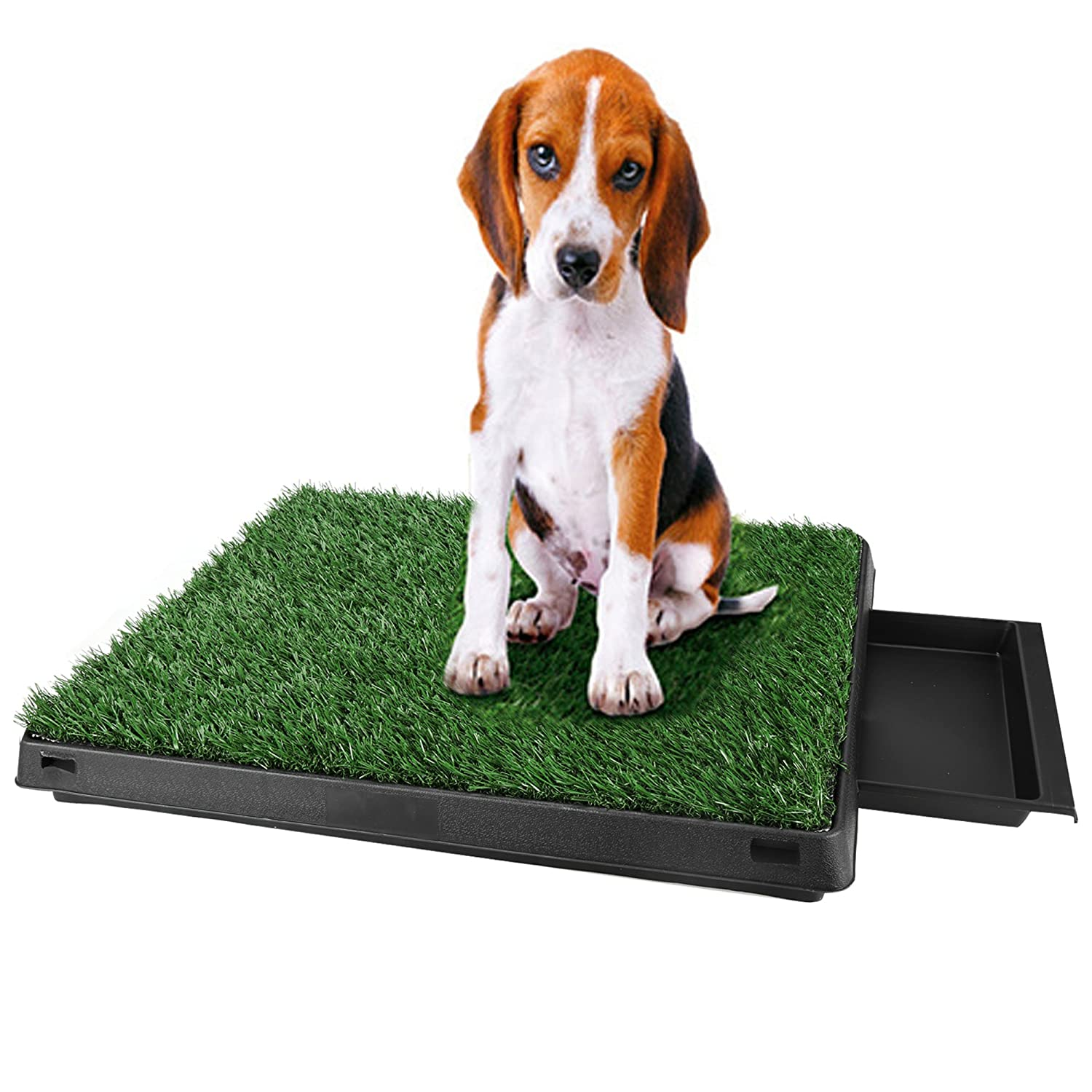 Amazon.com : Puppy Pads Indoor Potty Potty Patch Dog Grass Mat ... | How Do You Potty Train A Dog