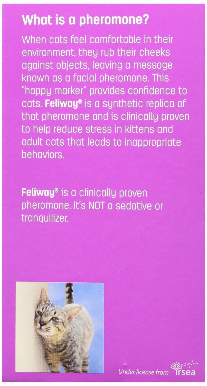 Amazoncom CEVA Animal Health CC Feliway Starter Kit - 22 cats living better life right now